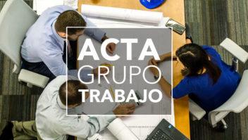 Acta Grupo Trabajo DGIEM y ASEICAM