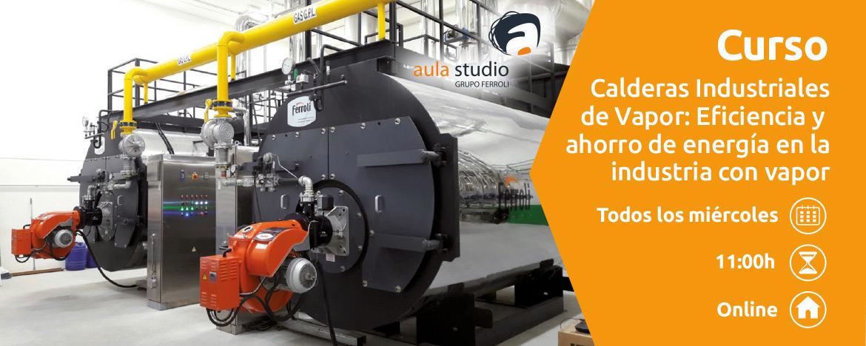 Webinar FERROLI: Calderas Industriales de Vapor: Eficiencia y ahorro de energía en la industria con vapor